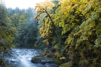 Santiam River in the Willamette National Forest, Oregon