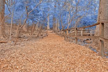 Sapphire Sanctuary Trail - HDR