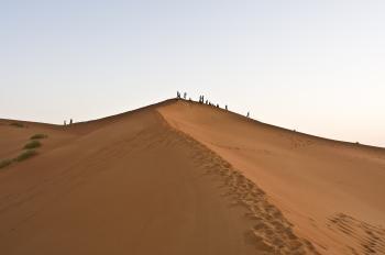 Saudi Arabia Dunes