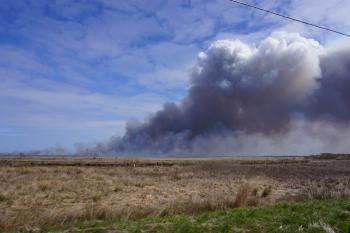 Scene prescribed fire Mackay Island NWR ncwetlands KG (7)