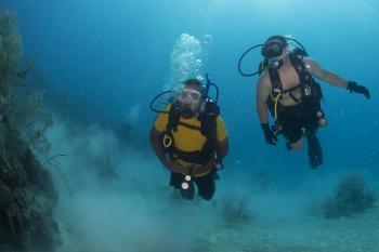 Scuba Divers in the Ocean