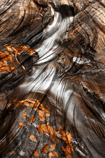 Sculpted Autumn Stream