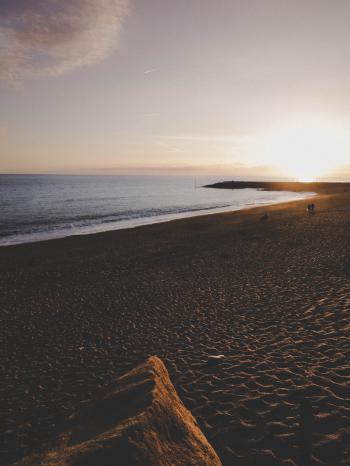 Seashore during Sunrise