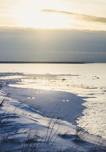 Seashore in Distant of Sea Dock