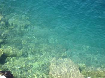 Seawater texture