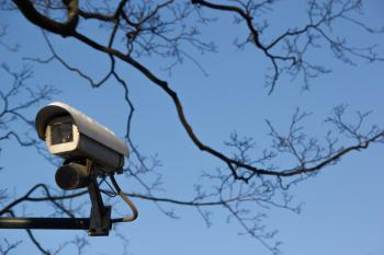 Security camera and tree