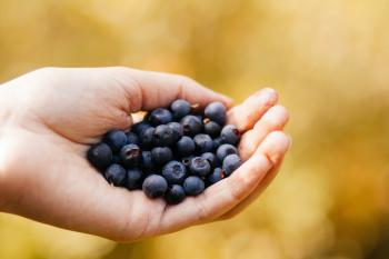 Person Holding Blueberry