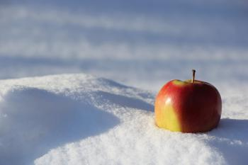 Selective Focus Photography of Red Apple on Snow