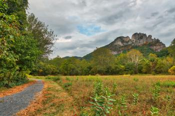 Seneca Rocks Trail - HDR