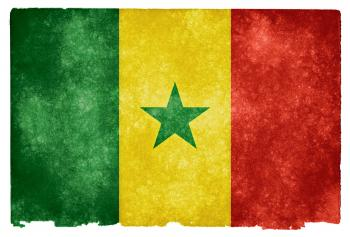 Senegal Grunge Flag