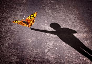 Shadow of a little boy touching a butterfly