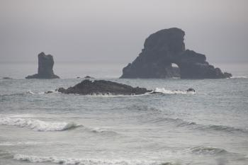 Short Beach, Oregon, Foggy Day