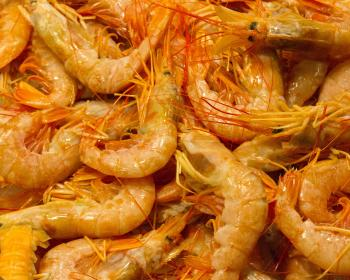Shrimp at fishmarket