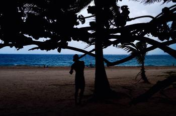 Silhouette Of Man Beside Tree Near Seashore