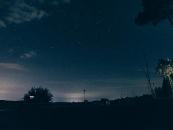 Silhouette of Trees and Buildings Under Starry Skies