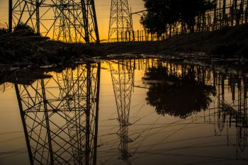 Silhouette of Trees and Electric Tower Reflecting on Body of Water during Sunset