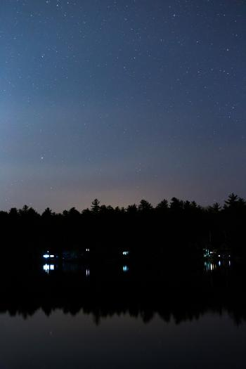 Silhouette of Trees Reflecting on Body of Water Under Starry Night Skies
