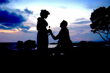 Silhouette Photo of Man Kneeling in Front of Woman Giving Flower