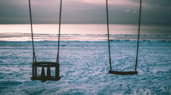 Silhouette Photo of Two Swings