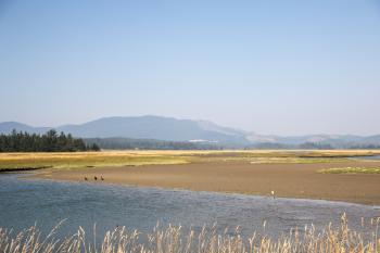 Sitka Sedge State Natural Area, Oregon