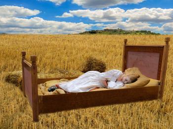 Sleeping in the Corn Field