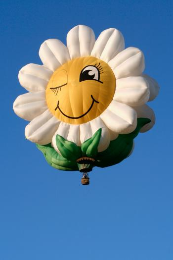 Smiling Daisy Air Balloon
