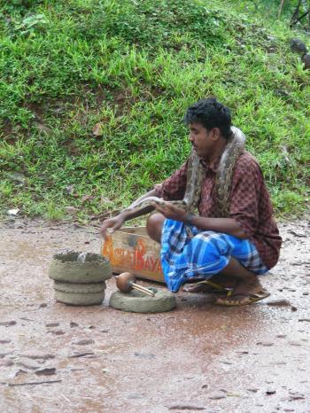 Snake Charmer-Sigiriya