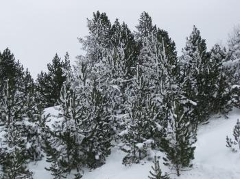 Snow in Andorra