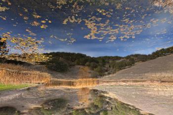 Sonoma Valley Pondscape - HDR