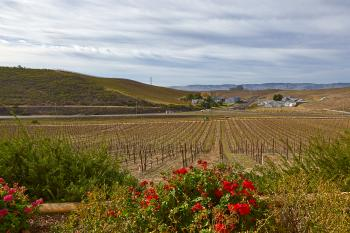 Sonoma Valley Scenery - HDR