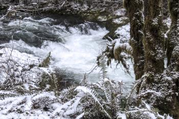 South Santiam River, Oregon, With Snow