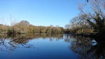 Southampton Common Pond