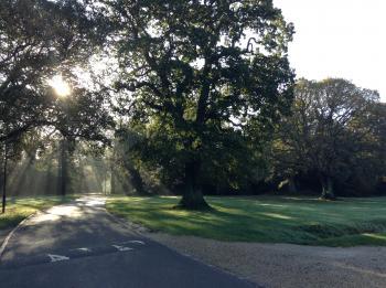 Southampton Morning Sun Rays