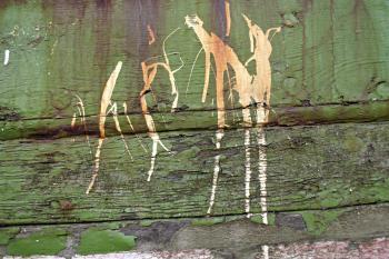 Splattered wood texture