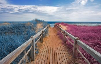 Split Tone Beach Boardwalk - Blue & Pink