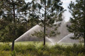 Sprinklers on a lawn with trees