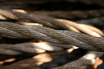 Steel wires