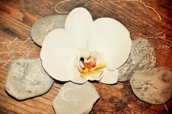 Stone n Flower