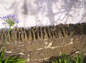 Stone Wall:  detail