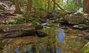 Stream at Lake Minnewaska State Park