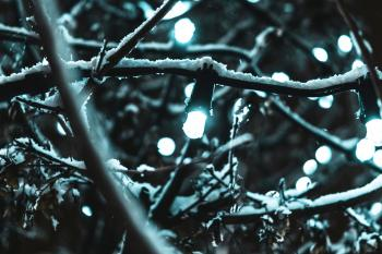 String Lights Covered by Snow