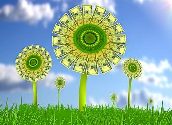 Sunflowers with dollar bills