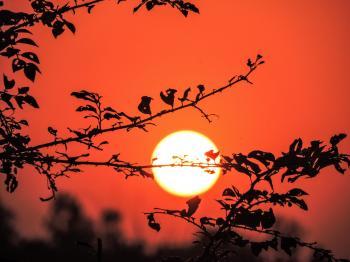 Sunset at Evening