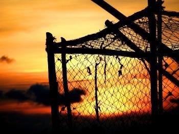 Sunset Fishing Pots / Nets