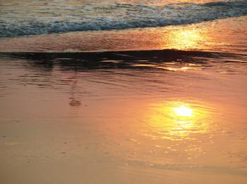 Sunset Reflection in the Sand