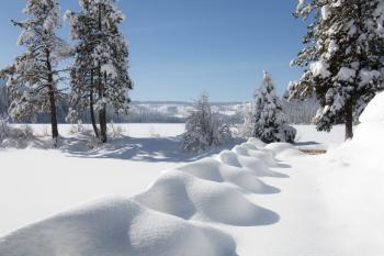 Suttle Lake, Oregon, January