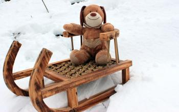 Teddy Bear on Snow Sled