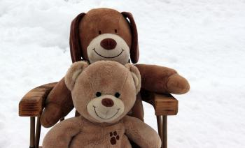 Teddy Bears in the Snow