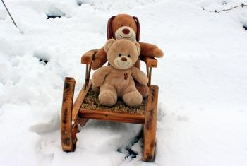Teddy Bears on Sled