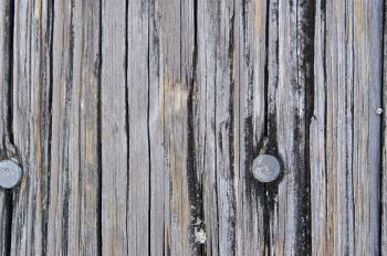 Texture - Wood